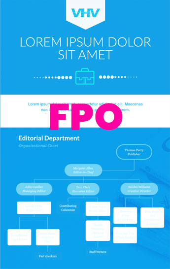 fpo_flow_chart
